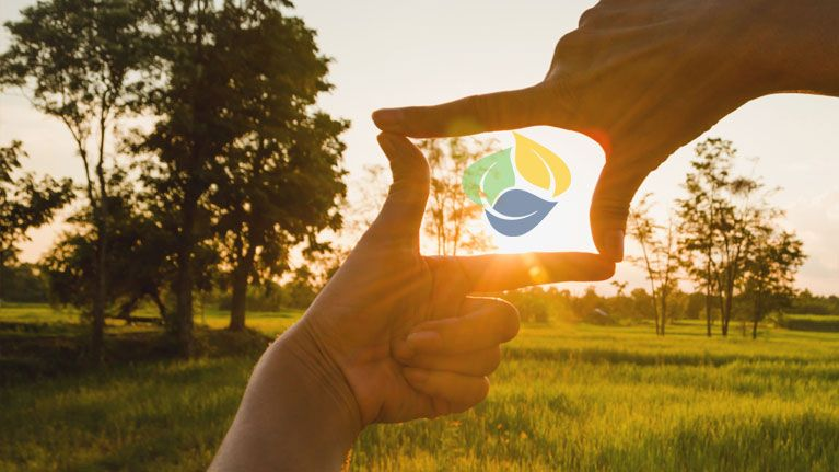 Person outside using two hands to capture the bright sun in a rectangular position with the Masonicare logo inside the persons hands.