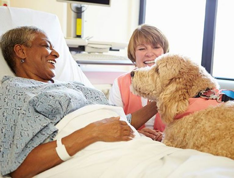 Older woman in bed receiving pet therapy for Hospice